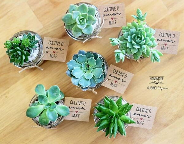 For simple engagement decoration use the succulent ones as souvenirs
