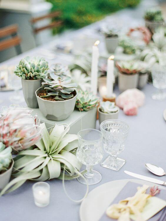 Souvenir centerpiece with succulents