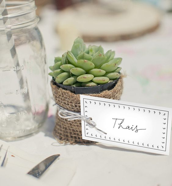 Table souvenir with succulent