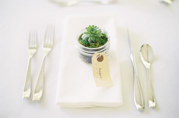Table souvenir for marriage with succulenta