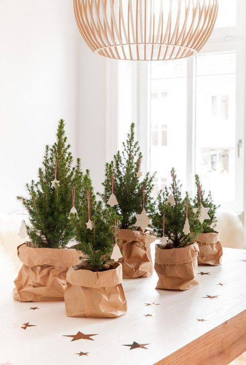 mini pine tree as a Christmas souvenir