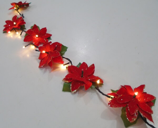 Christmas flower receives special lighting